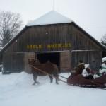 [:lt]Etninės kultūros lobiai atveriami Arklio muziejuje.[:en] [:ru]